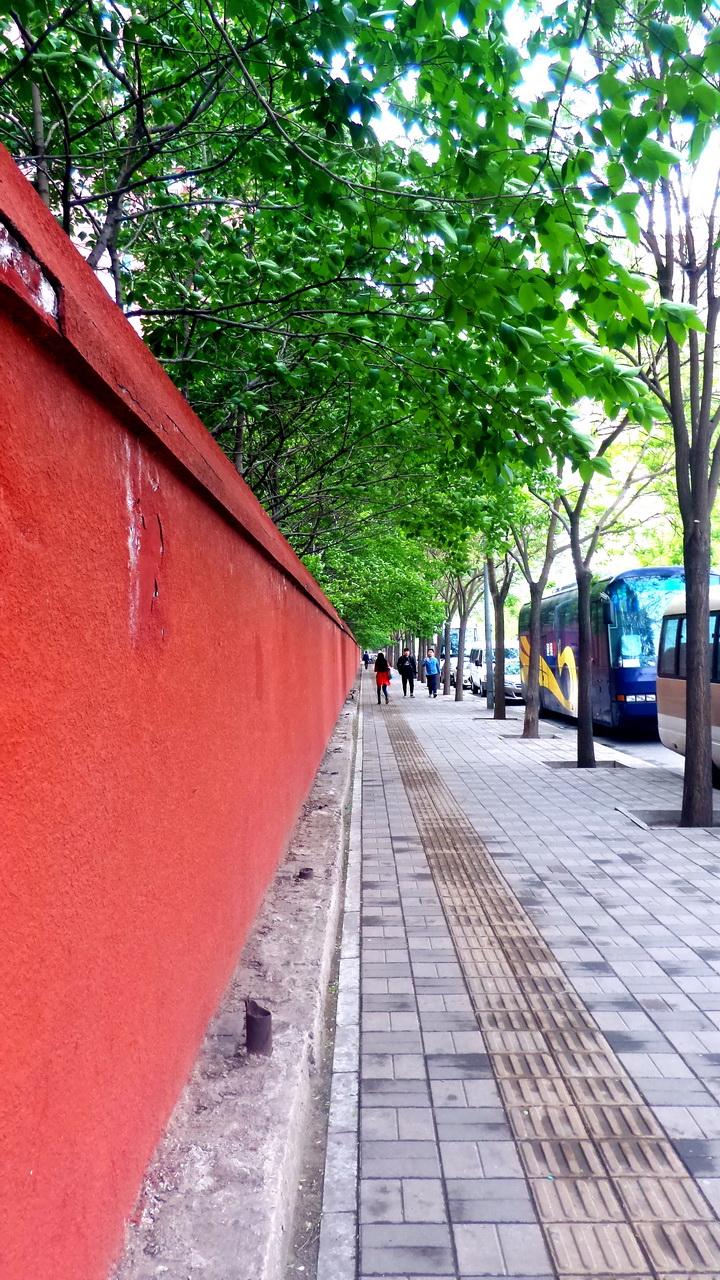 1红墙绿树